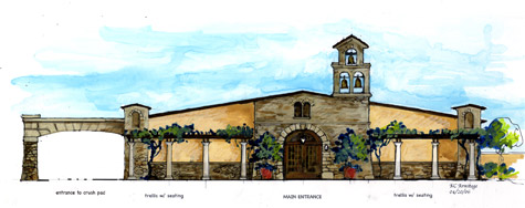 Winery Concept 2 - D'Amico Cellars